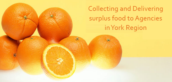 Food Distributers In Canada